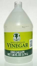 Vinegar the Weed Killer