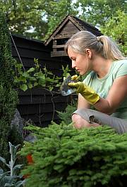 woman gardening using tips in the Plant Slant