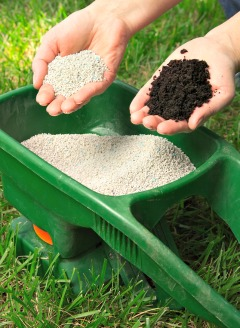 organic vs non-organic fertilizer
