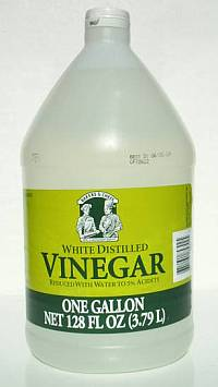 Vinegar the Weed Killer