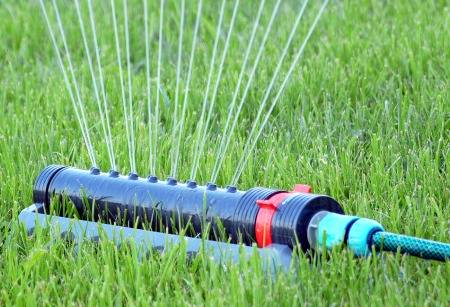 Tall Garden Sprinklers on small garden designs without gr